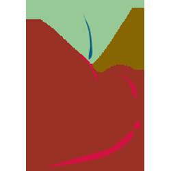Nutrition Internship