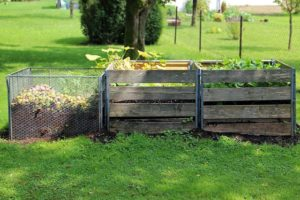 composting food waste helps plants grow